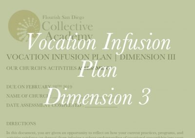2018-19 Vocation Infusion Plan: Dimension 3