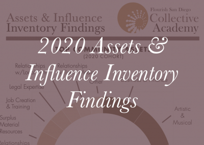 2020 Assets & Influence Inventory Findings