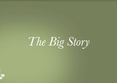 2021 – The Big Story Video