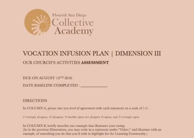 2016 Vocation Infusion Plan: Dimension 3 Fill-In Document