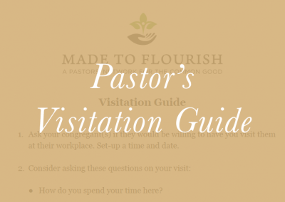 The Pastor's Visitation Guide