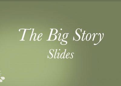 2021 The Big Story Slides